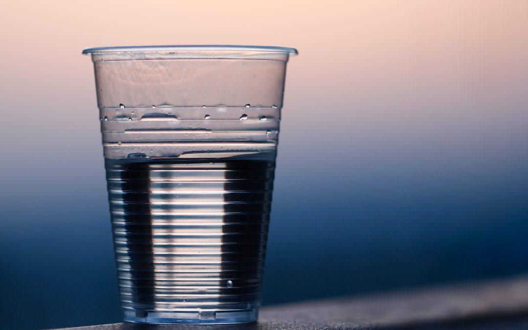 Vaisselle jetable : Produits biodégradables à usage unique